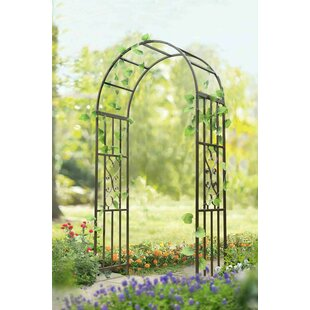 Darby Home Co Arenzville Steel Arbor