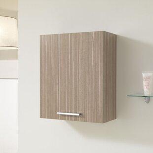 Janicki 40 X 47.5cm Wall Mounted Cabinet By Brayden Studio