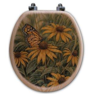 WGI-GALLERY Monarch Butter..