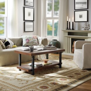 Mendonca Coffee Table with Storage