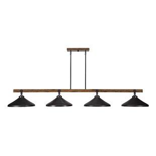 Davidson 4-Light Kitchen Island Pendant by Trent Austin Design