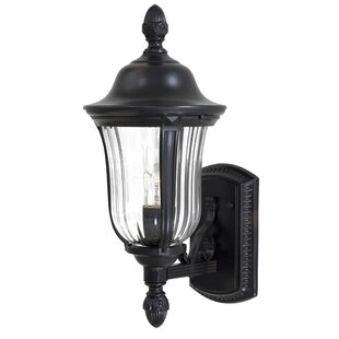 Great Outdoors by Minka Morgan Park 1-Light Outdoor Sconce