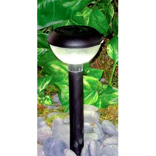 Solar 1-Light Pathway Light (Set of 12)