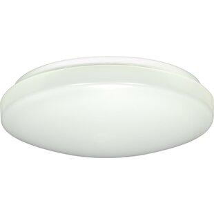 Ebern Designs Dahlquist 1-Light LED Outdoor Flush Mount
