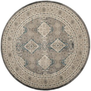Sofia Gray/Beige Area Rug by Darby Home Co