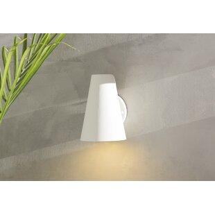 Zipcode Design Tamiko 1-Light Outdoor Sconce