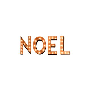 The Holiday Aisle Noel Holiday Typography Steel Marquee Light