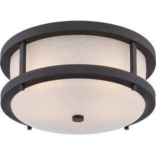 Carrie 2-Light LED Outdoor Flush Mount