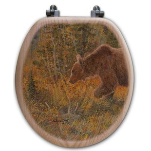 WGI-GALLERY The Grizzly Walk O..