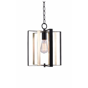 George Oliver 1-Light Pendant