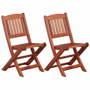 Folding Garden Chair (Set Of 2) By Sol 72 Outdoor