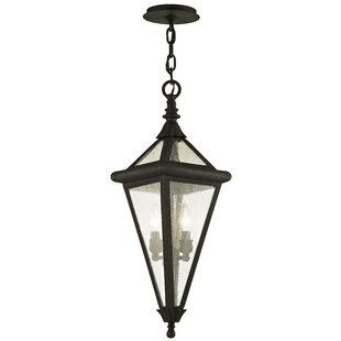 Darby Home Co Nautilus 2-Light Outdoor Hanging Lantern