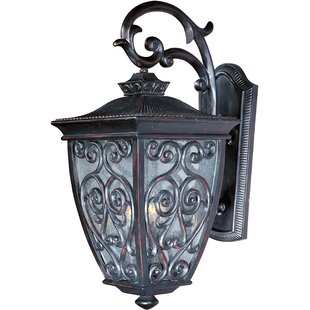 Astoria Grand Isaacson 2-Light Outdoor Wall Lantern