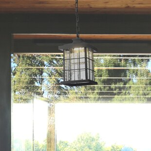 1-Light LED Outdoor Hanging Lantern
