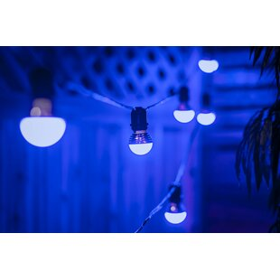 The Party Aisle 15 Ft. 1-Light Globe String Lights