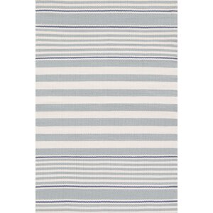 Indoor/Outdoor Blue/White Outdoor Area Rug
