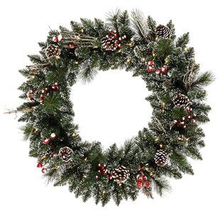 Snow Tipped Berry 76cm Lighted Christmas Wreath By The Seasonal Aisle