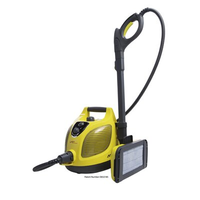 good quality steam cleaner for bed bugs