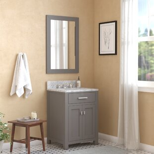 Raven 24 Single Bathroom Vanity Set with Mirror by Andover Mills