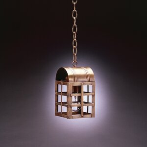 Adams 1-Light Outdoor Hanging Lantern