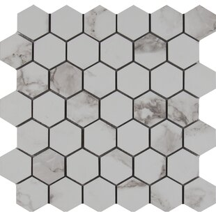 Statuario 2 X Hexagon Porcelain Mosaic Tile In Matte
