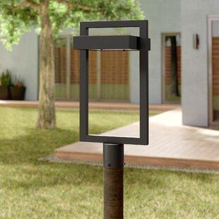 Orren Ellis Fortune Outdoor 1-Light LED Lantern Head