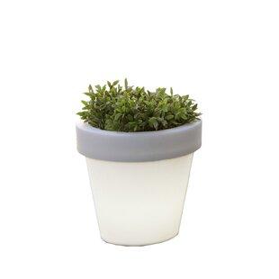 Darwin Resin Plant Pot By Freeport Park