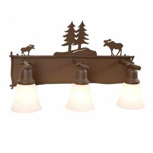 Big Save Moose 3-Light Vanity Light BySteel Partners