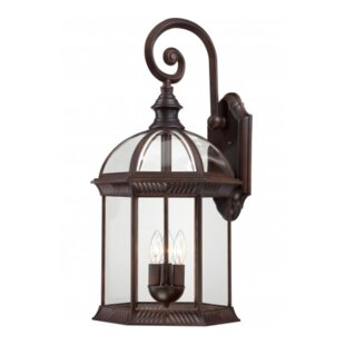 Estero 3-Light Outdoor Wall Lantern