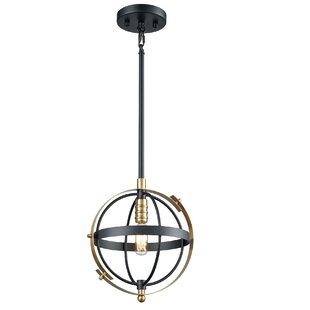 Wrought Studio Sagamore 1-Light Globe Pendant