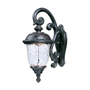 Astoria Grand Islington 1-Light Outdoor Wall Lantern