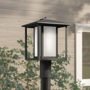 Hayner 1-Light Lantern Hea..