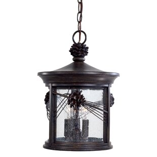 Great Outdoors by Minka Abbey Lane 3-Light Outdoor Hanging Lantern