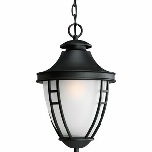 Great Price Triplehorn  1-Light Etched Hanging Lantern By Alcott Hill
