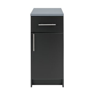 Crimmins 36 H x 16 W x 24 D Storage Cabinet by Red Barrel Studio