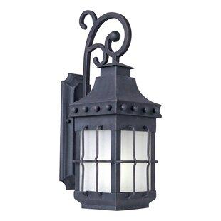 Loon Peak Harbiye 1-Light Outdoor Wall Lantern