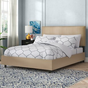 Doleman Traditional Upholstered Panel Bed