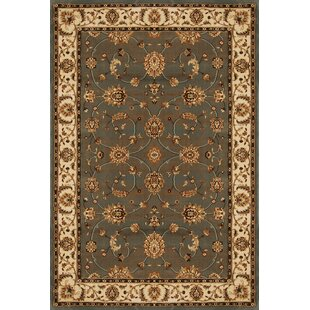 Triumph Gray Area Rug By Home Dynamix