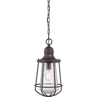 Windon 1-Light Outdoor Pendant