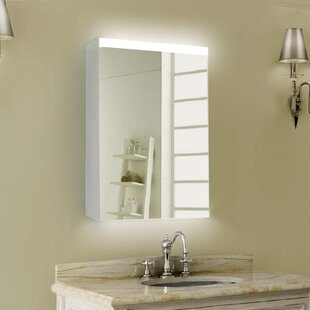 Nickens Frameless 1 Door Medicine Cabinet with 2 Adjustable Shelves and LED Lighting by Ivy Bronx
