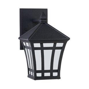 Bloomsbury Market Brette 1-Light Outdoor Wall Lantern