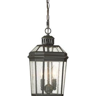 Gracie Oaks Krithika 2-Light Outdoor Hanging Lantern
