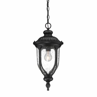 Angie 1-Light Outdoor Hanging Lantern