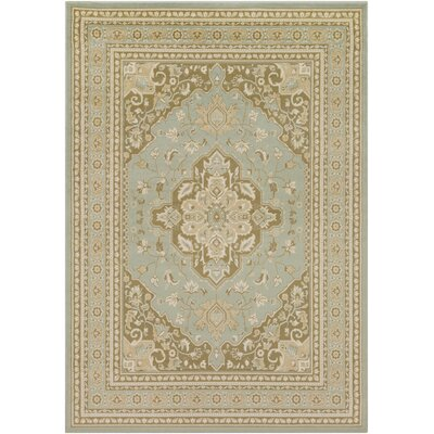 5 X 8 Green Area Rugs You Ll Love In 2019 Wayfair