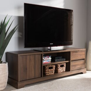 Banta 60 TV Stand by Ivy Bronx