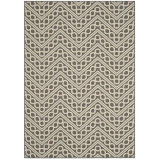 Hampton Ivory/Gray Indoor/Outdoor Area Rug