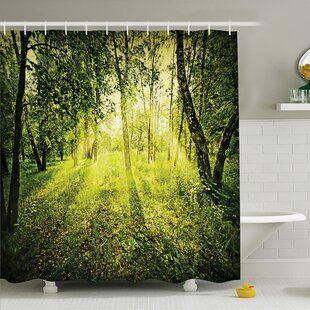 Best Price Forest Morning Light in Nature Shower Curtain Set ByAmbesonne