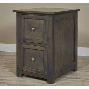 Millwood Pines Lintz 2 Drawer Vertical Fi..