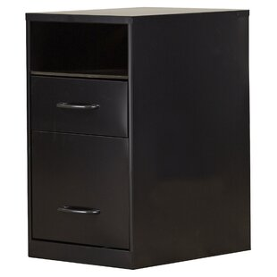Bourassa 2 Drawer Filing Cabinet