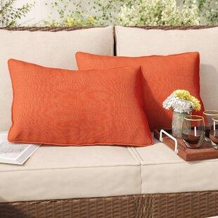 Thorson Outdoor Lumbar Pillow (Set of 2)